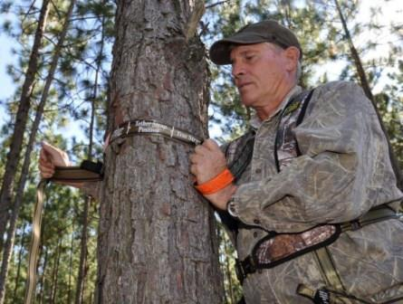 This hunter is getting his strap and harness system tethered to the tree before climbing