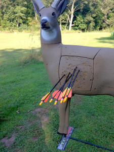 show proficiency at a target