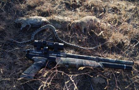 Hunting with airguns offers a lot of excitement