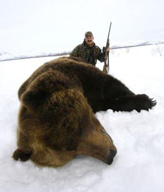 Brown bear shot with select type of bullet with proper hunting rifle