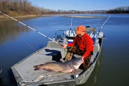 Use different catfish catching tactics depending on where you are