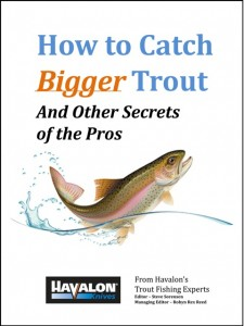 How to catch bigger trout & other secrets_b test 480X638