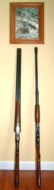 Old-Ithaca-Shotguns- 183x640