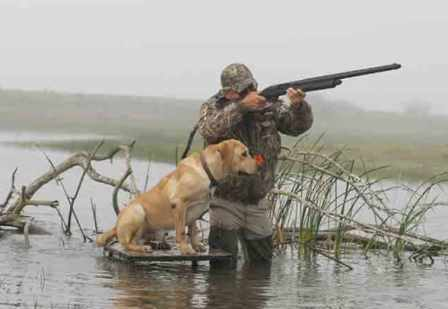 duck hunting dog and his owner