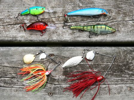 deep diver lures for bass 448x336