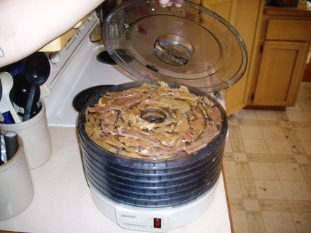 dry turkey meat in dehydrator 448x336