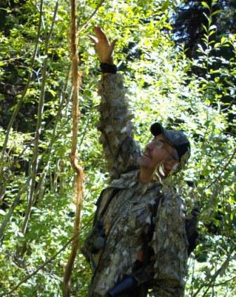 Tom Claycomb points out an elk rub on a scouting trip.
