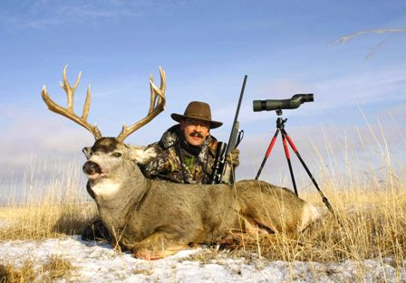 Mule Deer 4 Things Matter When You Re Gunning Up
