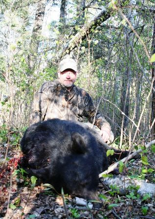 shot this bear on final evening 317x448